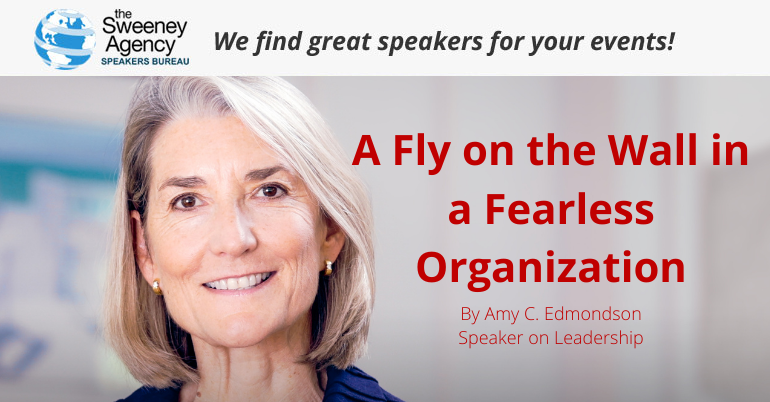 A Fly on the Wall in a Fearless Organization